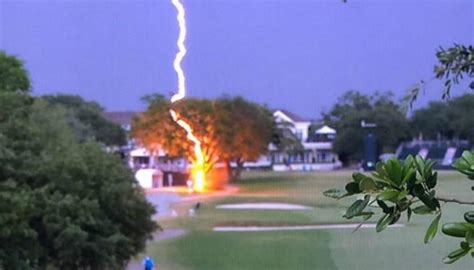Golf: Crazy video shows lightning striking tree at US Open